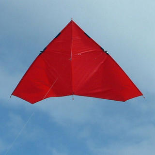 Nighthawk Kite