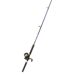 Fishtech Level Wind Boat Rod/Reel Combo