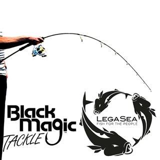 Black Magic Light-Jigging 173 Rod