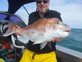 Wanganui Snapper on PFS Longline