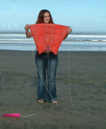 Small Pocket Sled Kite