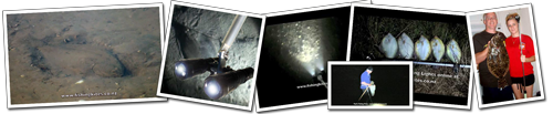 Underwater LED flounder gigging lights